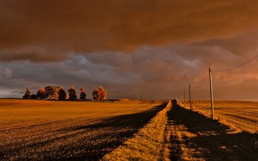 Picture road, field, autumn, the sky, clouds, light, trees, clouds, the way, posts, wire, dal, space, …