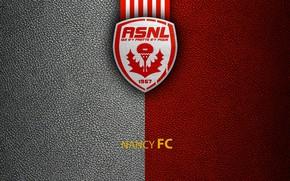 Picture wallpaper, sport, logo, football, Nancy, Ligue 1