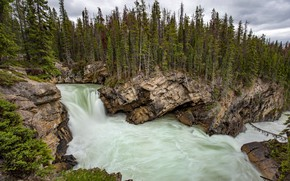 Picture forest, trees, mountains, river, rocks, shore, the slopes, view, waterfall, stream, ate, Canada, Albert, pond