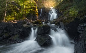 Picture trees, rock, stones, waterfall, Norway, cascade, Norway, Lier, Lier