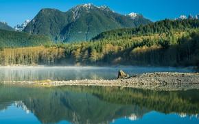 Picture trees, mountains, lake, reflection, Eunice Lake, Washington State, Cascade Range, Mount Rainier, Lake Eunice