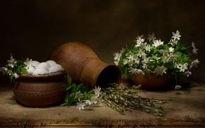 Picture flowers, branches, eggs, fabric, still life, pots, burlap, Verba, anemone, pot, Татьяна Феденкова