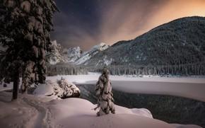 Picture winter, snow, trees, landscape, mountains, night, nature, lake, Italy, path, forest, Фузине, Lago di Fusine