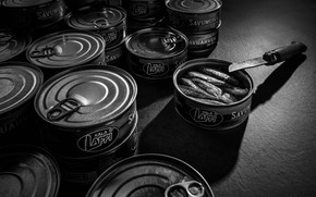 Picture fish, knife, canned