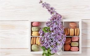Picture box, cookies, lilac, macaron