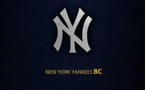 Picture wallpaper, sport, logo, baseball, New York Yankees