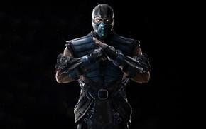 Picture Mortal Kombat, Sub-Zero, Mortal Kombat 11