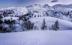Picture winter, snow, mountains