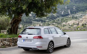Picture tree, Volkswagen, rear view, universal, 2017, Golf Variant, white-gray