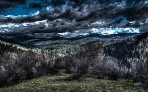 Picture Yosemite National Park, Kinda Dark, Toxic Yosemite, Workplace Mobbing