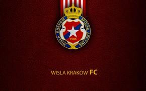 Picture wallpaper, sport, logo, football, Wisla Krakow