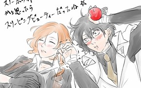 Picture Apple, sleeping, guys, two, red eyes, Bungou Stray Dogs, Stray Dogs: A Literary Genius