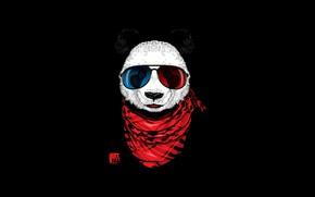 Picture DesignByHumans, Scarf, Background, Art, Style, Big Panda, The giant Panda, by DesignByHumans, Design By Humans, …