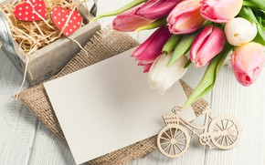 Picture flowers, bouquet, tulips, composition, THE OFF