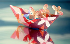 Picture macro, reflection, flowers, hydrangea, paper boat
