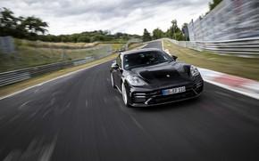 Picture black, Porsche, Panamera, track, The Nürburgring, 2020, Nordschleife, предсерийный
