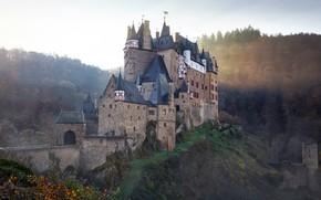 Picture nature, background, castle