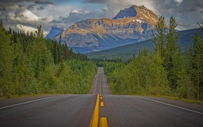 Picture road, forest, trees, mountains, Canada, Canada, Rocky mountains, Rocky Mountains, Icefields Parkway
