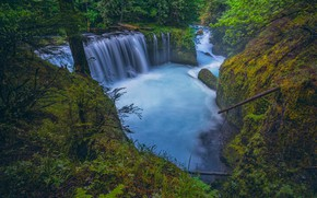 Picture forest, river, waterfall, Columbia River Gorge, Washington State, Little White Salmon River, Spirit If, The …