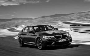Picture asphalt, track, BMW, sedan, BMW M5, 2017, M5, F90