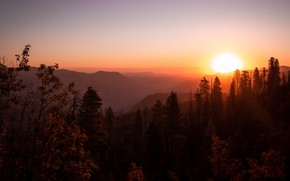 Picture forest, the sky, the sun, sunset, mountains, fog, hills, dal, the evening