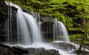 Picture forest, waterfall, PA, cascade, Pennsylvania, Ricketts Glen State Park, State Park Ricketts Glen, Mohawk If