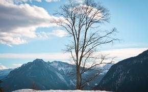Picture winter, the sky, clouds, snow, trees, mountains, nature, rocks