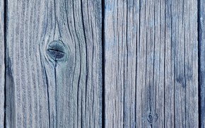 Picture tree, Board, texture