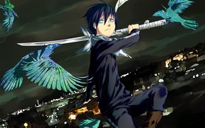 Picture birds, night, sword, guy, Noragami, Yato