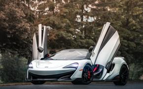 Picture McLaren, supercar, Spider, 2019, 600LT