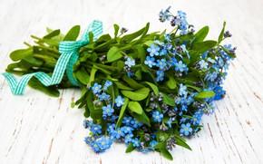 Picture flowers, bouquet, forget-me-nots, Olena Rudo