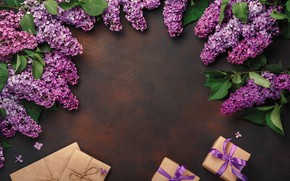 Picture flowers, gift, wood, flowers, lilac, lilac, frame, gift box