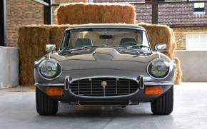 Picture sports car, front view, Jaguar E-Type
