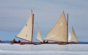 Picture sail, USA, Buer, Барритаун