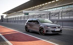 Picture Volkswagen, Golf, GTI, VII, TCR