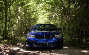 Picture BMW, Blue, Front, Forest, Sight, F90