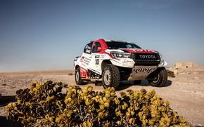 Picture Toyota, pickup, Hilux, 2019, Gazoo Racing