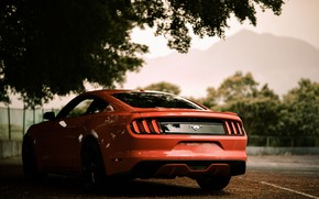 Picture horse, Mustang, Ford, Sepia, Ford Mustang, beautiful color