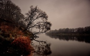 Picture autumn, landscape, nature, river, gloomy morning