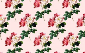 Picture flowers, background, vintage