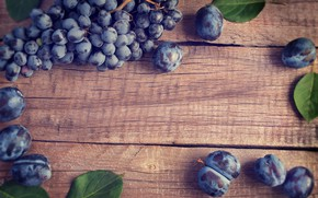 Picture background, tree, grapes, drain