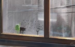 Picture rain, frog, umbrella, window, draws