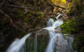 Picture autumn, forest, trees, stream, waterfall, cascade, Argentina, Argentina, Patagonia, Patagonia, Los Glaciares National Park, National …