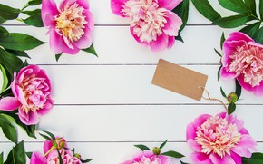 Picture flowers, bouquet, pink, wood, pink, flowers, beautiful, peonies, peonies