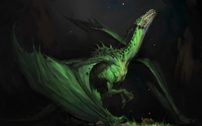 Picture dragon, fantasy, art, Dragon, Darya Kozhemyakina