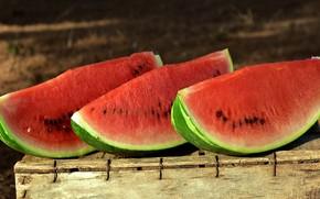 Picture watermelon, three, pieces, box, slices