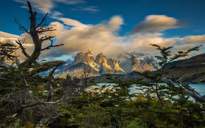 Picture clouds, mountains, tree, Chile, Patagonia, National Park Torres del Paine