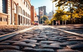 Picture city, USA, road, trees, bridge, New York, NYC, park, New York City, morning, street, people, …