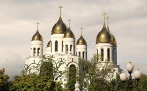 Picture Russia, Kaliningrad, Church, dome