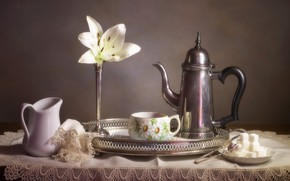 Picture Lily, Cup, sugar, still life, coffee pot
